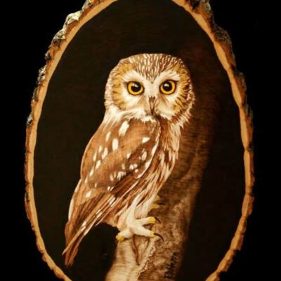 Pyrography Owl