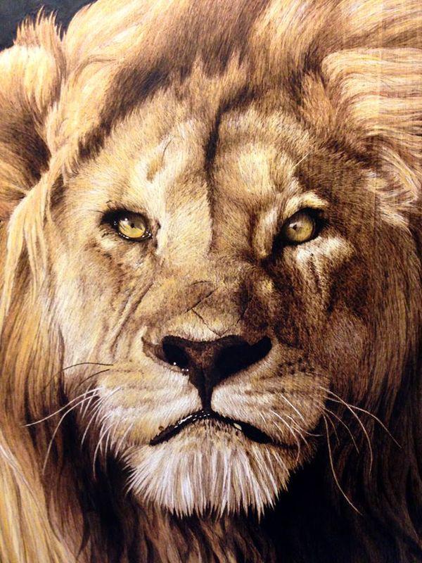 Pyrography Lion